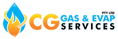 CG Gas - Brivis service and repairs specialists